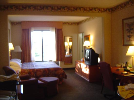 Wingate by Wyndham Jacksonville / Mayo Clinic Area: King Suite