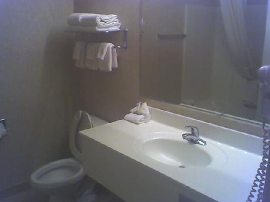 BEST WESTERN Executive Inn: Bathroom Interior