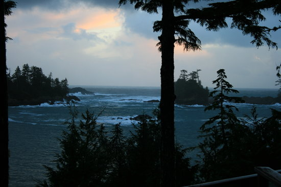 Ucluelet, Canada: View from our Room
