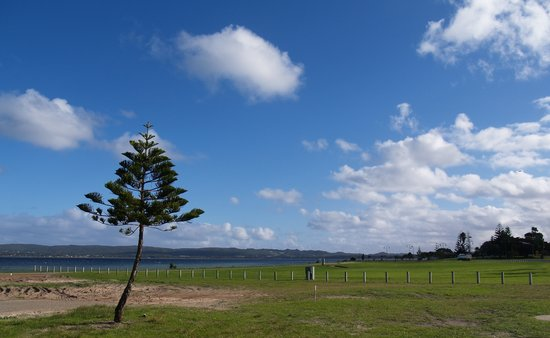 Landscape of Albany