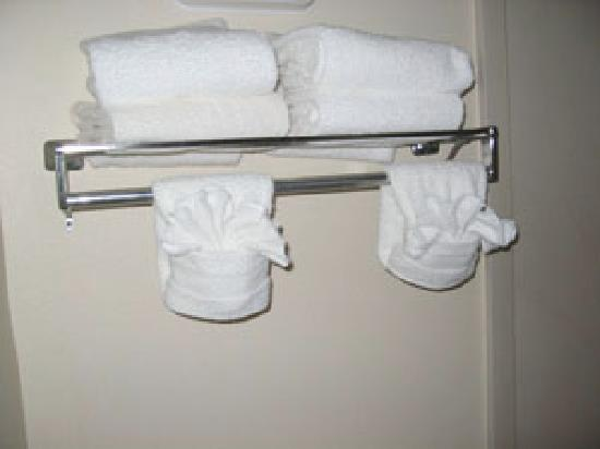 Quality Inn: towels, decent and good condition