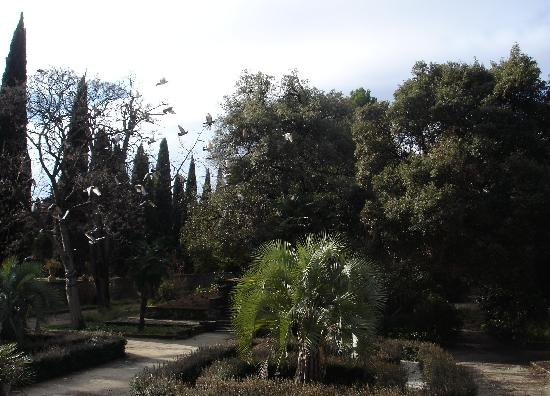 le jardin des plantes picture of montpellier herault tripadvisor. Black Bedroom Furniture Sets. Home Design Ideas