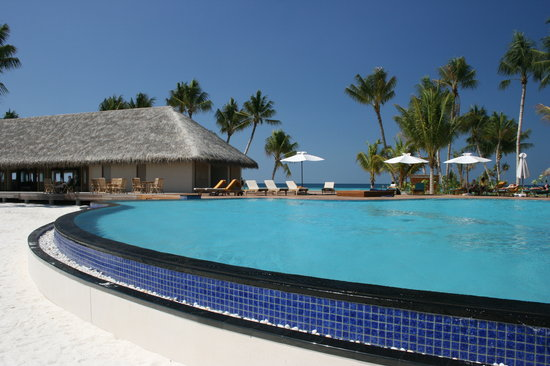 Veligandu Island Resort: Pool &amp; bar