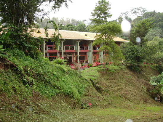 Cuffie River Nature Retreat and Eco-Lodge