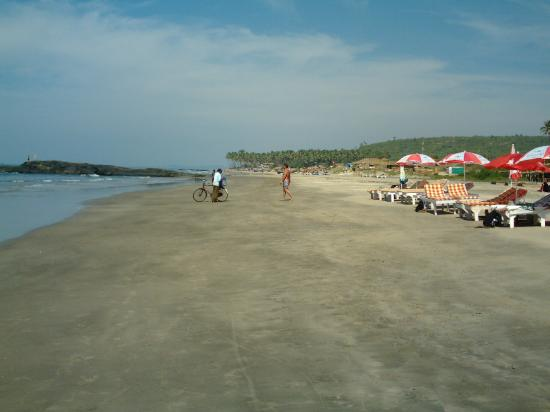 Best Restaurants In Goa Near Baga Beach