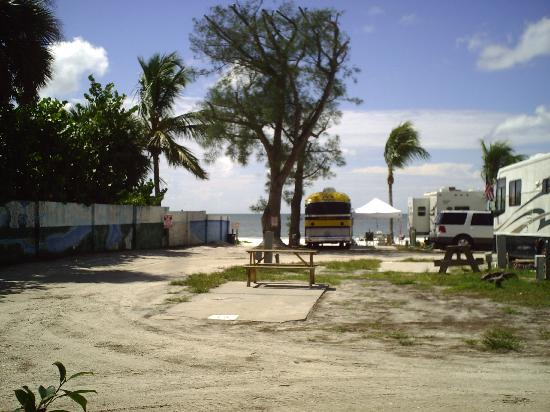 Red Coconut RV Park: Gulf Front-BeachSide=Sweet