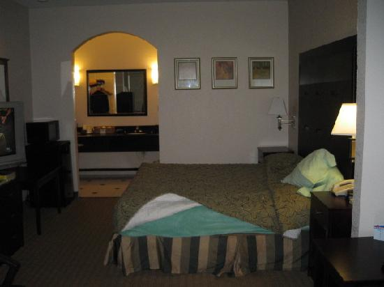 BEST WESTERN Windsor Suites: King bedroom