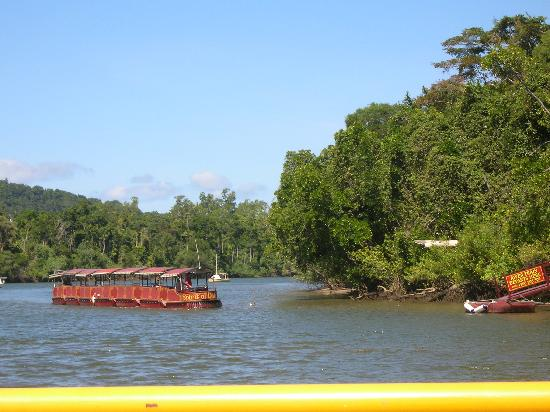 Wait a While in the Daintree: Crossing the Daintree River - Nearly There