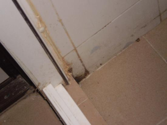 Mold In Bathroom Group Picture Image By Tag