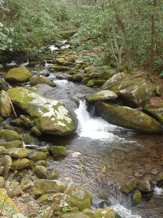 Gatlinburg, TN: mountain stream