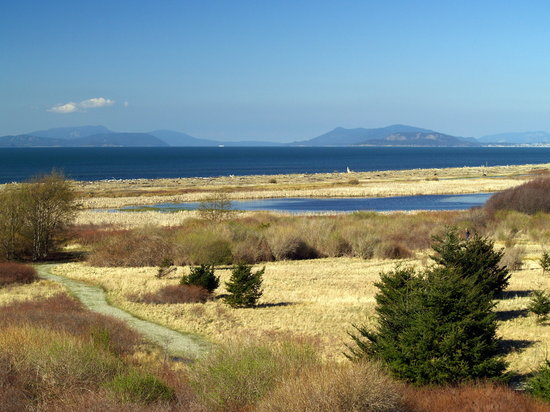 Whidbey Island, WA: a stroll around Joseph Whidbey State Park
