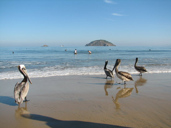 Rincon de Guayabitos, México: waiting for the morning catch