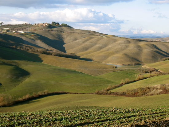 Montalcino, Italy: Tuscan scene