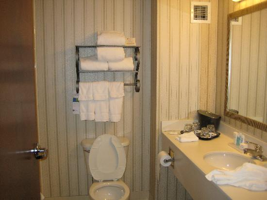 Nicely Decorated Bathroom  Picture Of Wyndham Boston. Ashley Furniture Room Packages. Large Decorative Outdoor Planters. Ikea Kids Room. Hollywood Party Decorations. Reno Rooms. Vbs Decorations. Hallway Table Decor. Sliding Door Decor