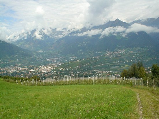 Merano (Meran), Italien: Walking high up on the mountain