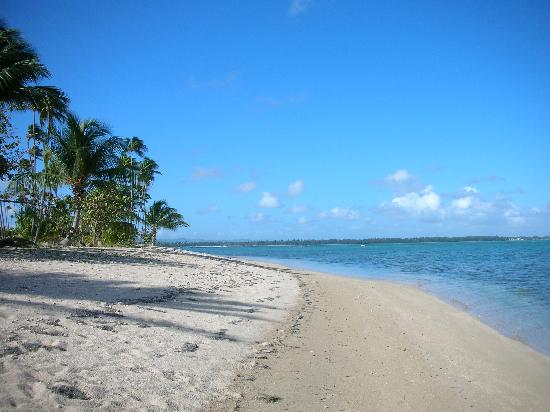 Beach At Gran Melia Is Lovely For A Walk Picture Of Gran Melia Golf Resort Puerto Rico Rio