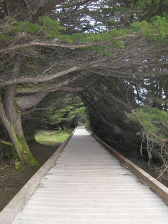 Fort Bragg, Californië: Boardwalk to cliffs/ tidepools