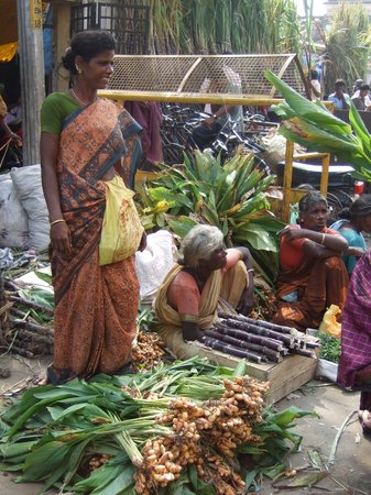 Pondichry, Inde : Pondicherry - sugar can vendors 