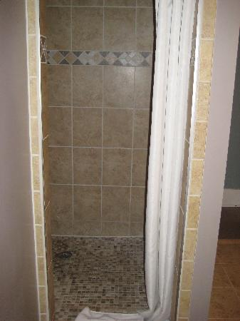 ‪‪Green Oaks B&B‬: shower‬