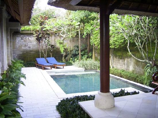 Villa pool picture of samhita garden ubud tripadvisor for Garden pool villa ubud