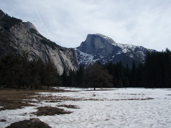 Fish Camp, CA: Half Dome