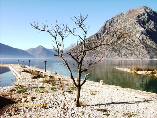 Kotor Photos - Featured Images of Kotor, Montenegro - TripAdvisor