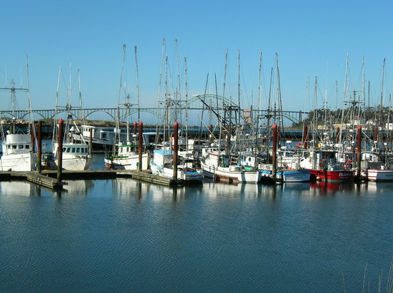 Орегон: Fishing fleet at Newport, Oregon