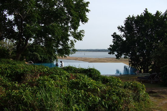 Dambulla, Sri Lanka: the infinity pool