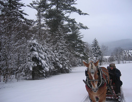 A sleigh ride in Waterville Valley