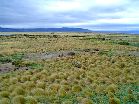 Bed and breakfasts in Punta Arenas