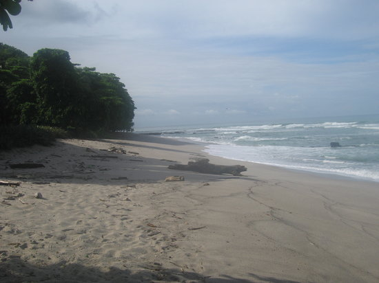 Santa Teresa, Costa Rica: Beach in Santa Theresa