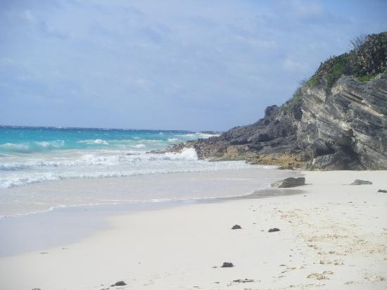 Paget Parish, Βερμούδα: Grape Bay - Beach short walk from hotel down a tree covered path