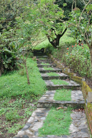 Banos, Ecuador: A path to the pool.