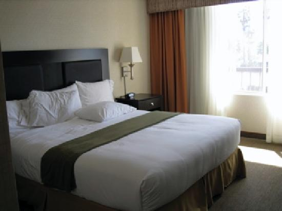 Holiday Inn Express Newport Beach: King room