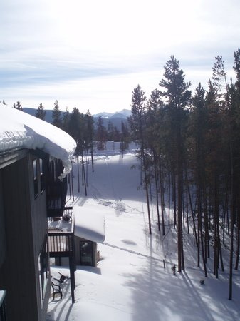 Photo of Engelmann Pines Winter Park