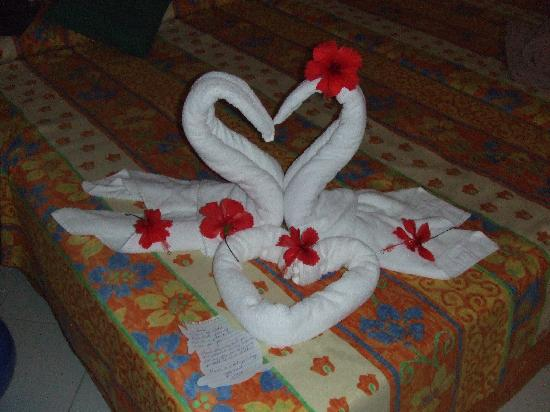 http://media-cdn.tripadvisor.com/media/photo-s/01/0e/52/9b/maid-s-towel-art.jpg