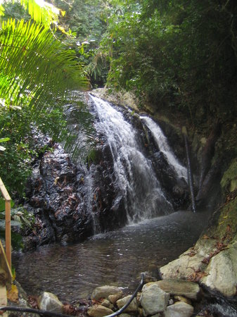 La Ceiba, Honduras: Hot Springs &amp; SPA
