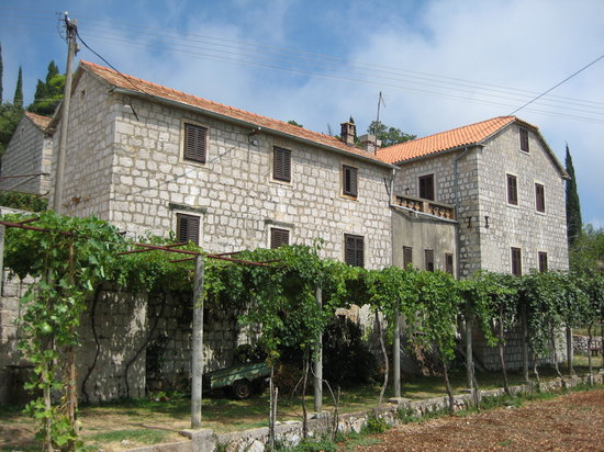 Dubrovnik- Family Winery