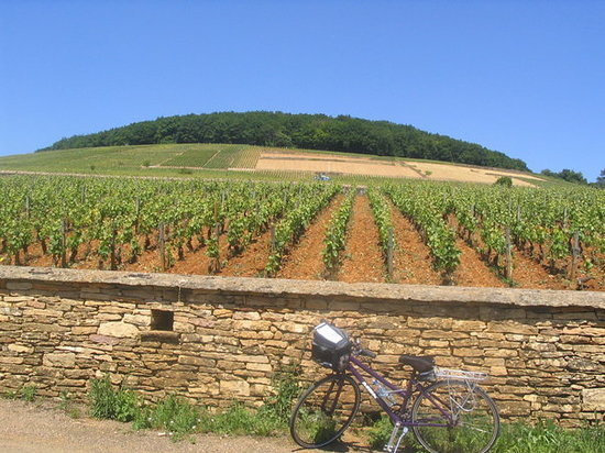 Beaune, Prancis: resting our bikes...