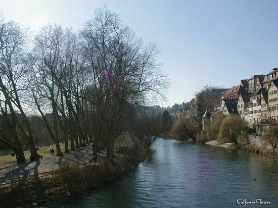 Tybinga, Niemcy: Neckar Inseln, viewed from the Neckar bridge