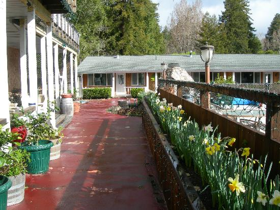 The woods resort at the russian river guerneville ca for Russian river cabins guerneville