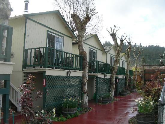 The Woods Resort at the Russian River: the cabins along one side of the pool