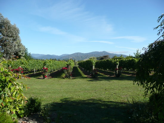 Blenheim, Nueva Zelanda: view from the terrace