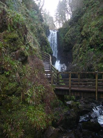Photos of Glenariff Forest Park - Attraction Images