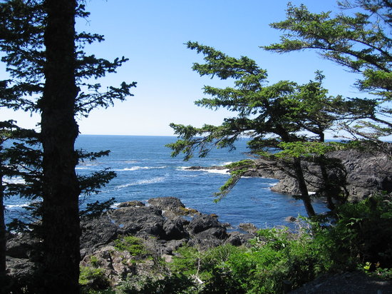 Ucluelet, Canadá: Beautiful scenery on the trail