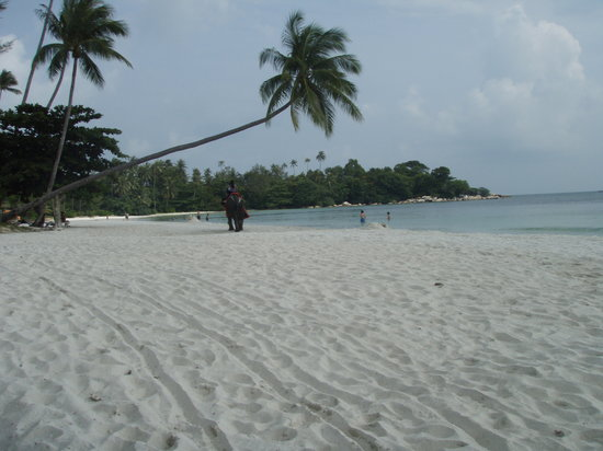 Lagoi, Индонезия: Beach late afternoon