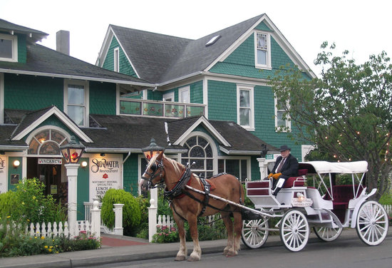 Shelburne Country Inn : Horse Drawn Carriage at the Shelburne