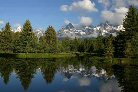 Jackson Lake Lodge: Schwabacher Landing - 15 minutes