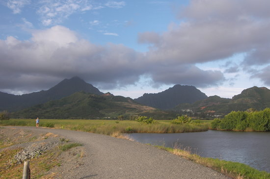 Kailua, Гавайи: Walkway and Path