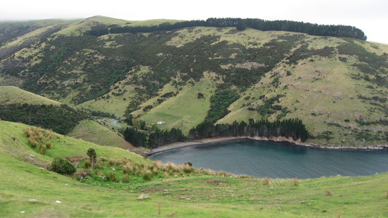 Akaroa, Selandia Baru: Arriving at the Pohatu inlet